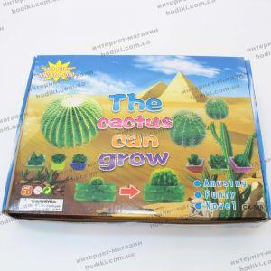 Игрушка Выращивание кактусов 48шт/уп (код 13118)